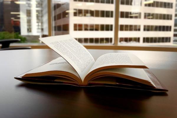 2017小学二年级语文下册阅读专项训练题
